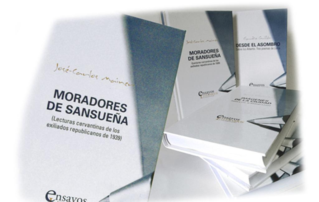 Cátedra Miguel Delibes – Colección Ensayos Literarios